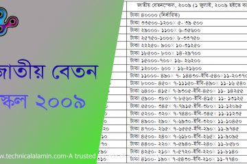 Pay Scale 2009